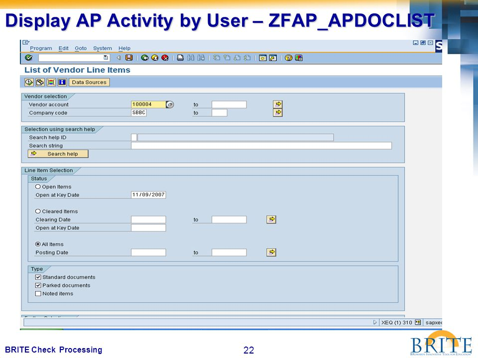 22 BRITE Check Processing Display AP Activity by User – ZFAP_APDOCLIST