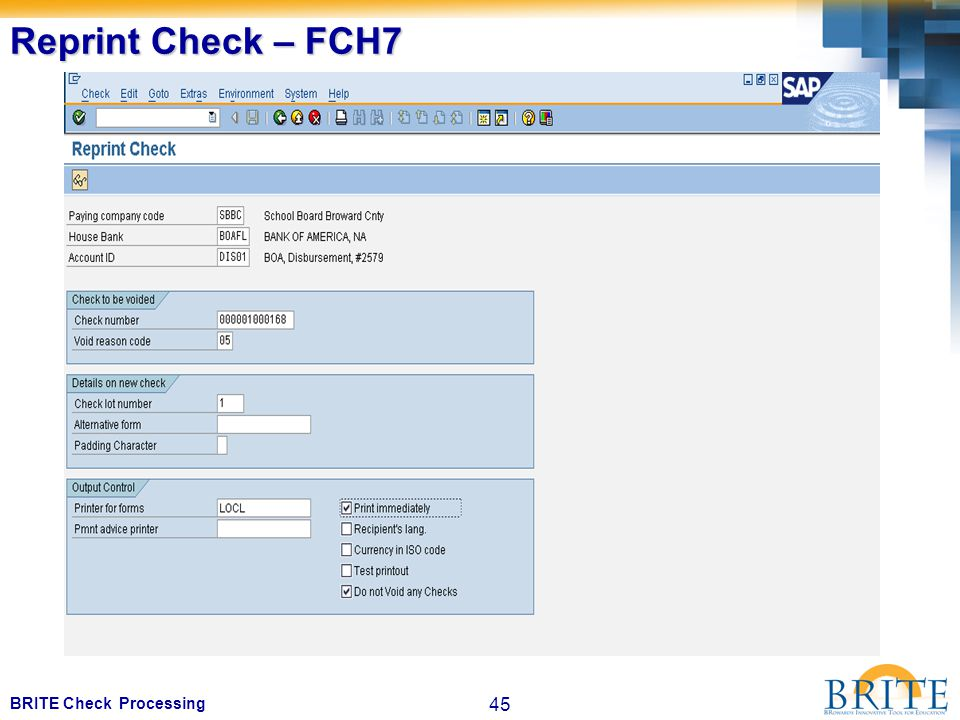 45 BRITE Check Processing Reprint Check – FCH7