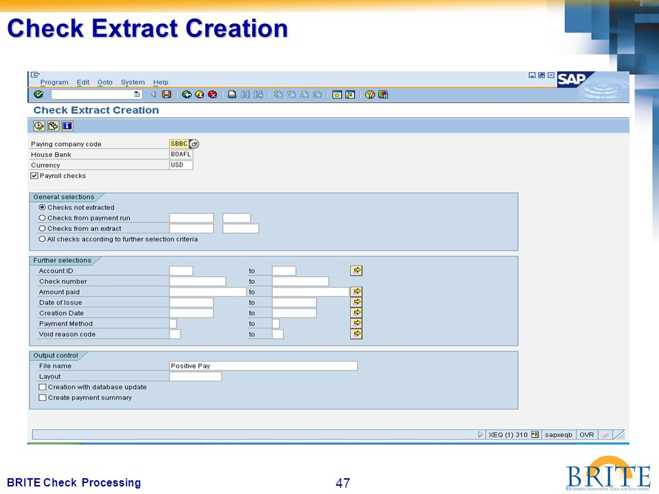 47 BRITE Check Processing Check Extract Creation