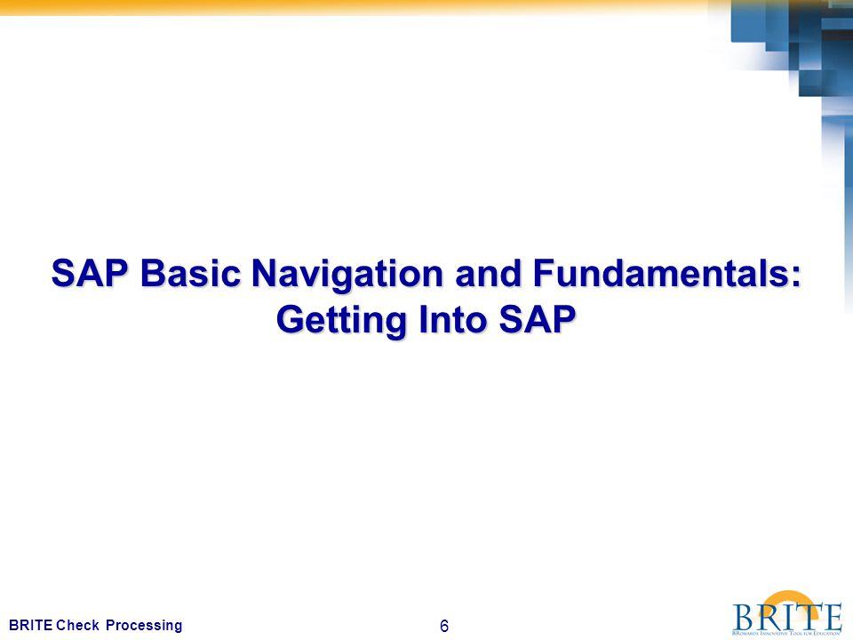6 BRITE Check Processing SAP Basic Navigation and Fundamentals: Getting Into SAP