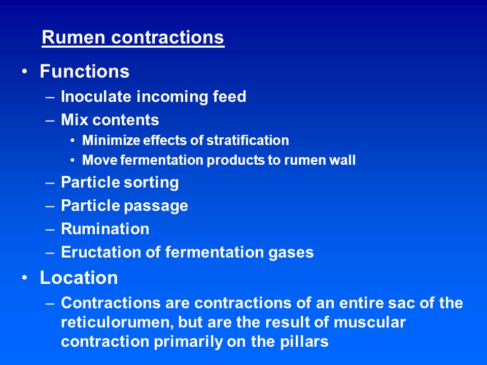 Rumen contractions Functions –Inoculate incoming feed –Mix contents Minimize effects of stratification Move fermentation products to rumen wall –Particle sorting –Particle passage –Rumination –Eructation of fermentation gases Location –Contractions are contractions of an entire sac of the reticulorumen, but are the result of muscular contraction primarily on the pillars