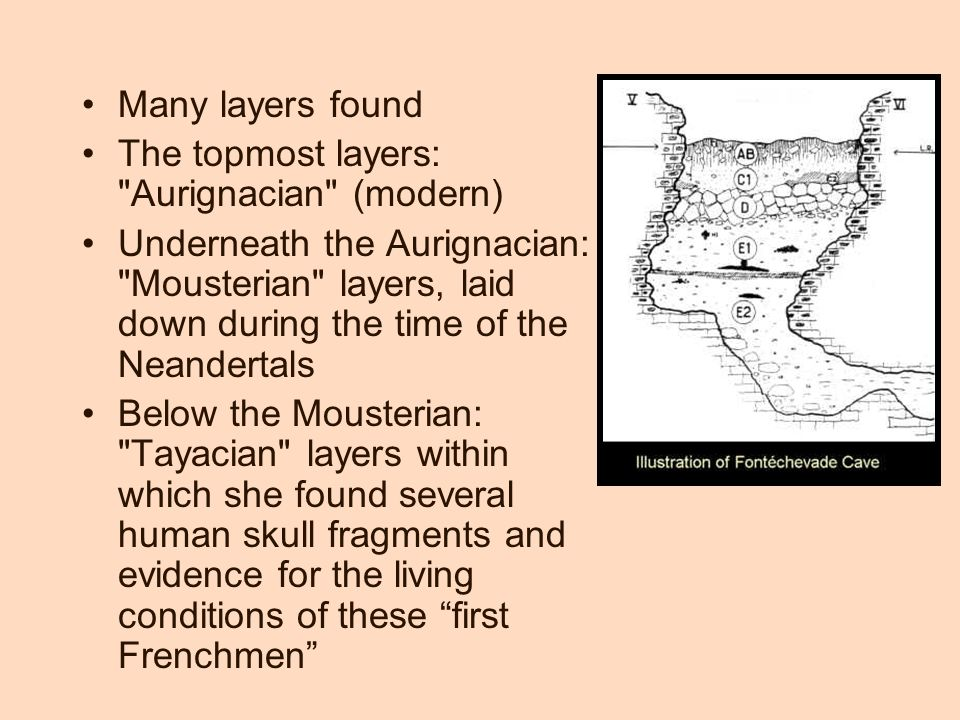 Many layers found The topmost layers: Aurignacian (modern) Underneath the Aurignacian: Mousterian layers, laid down during the time of the Neandertals Below the Mousterian: Tayacian layers within which she found several human skull fragments and evidence for the living conditions of these first Frenchmen