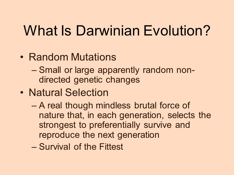 What Is Darwinian Evolution.