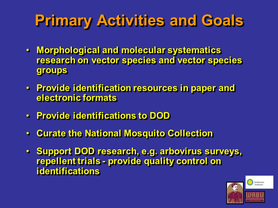 Primary Activities and Goals Morphological and molecular systematics research on vector species and vector species groupsMorphological and molecular systematics research on vector species and vector species groups Provide identification resources in paper and electronic formatsProvide identification resources in paper and electronic formats Provide identifications to DODProvide identifications to DOD Curate the National Mosquito CollectionCurate the National Mosquito Collection Support DOD research, e.g.