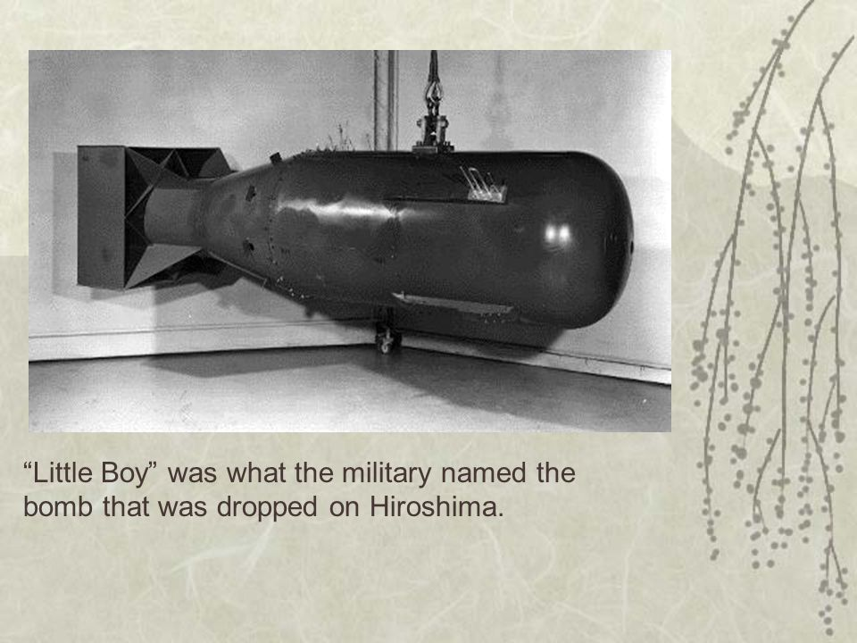 Little Boy was what the military named the bomb that was dropped on Hiroshima.