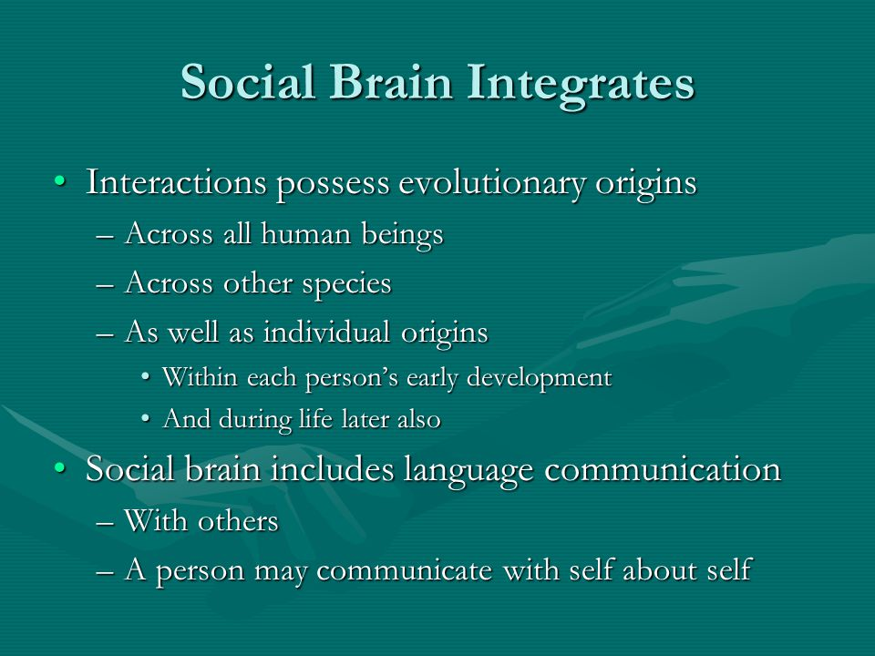Social Brain Integrates Interactions possess evolutionary originsInteractions possess evolutionary origins –Across all human beings –Across other spec