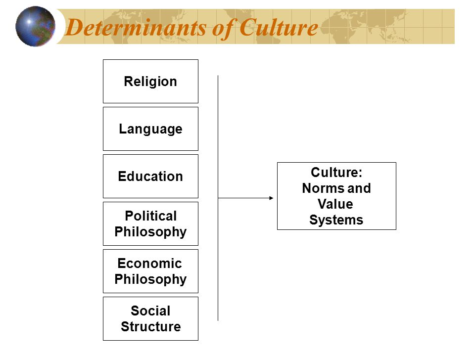 Determinants of Culture Education Economic Philosophy Political Philosophy Religion Language Social Structure Culture: Norms and Value Systems Culture: Norms and Value Systems