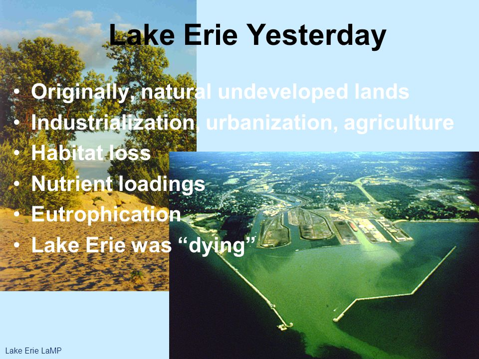 Lake Erie Yesterday Originally, natural undeveloped lands Industrialization, urbanization, agriculture Habitat loss Nutrient loadings Eutrophication Lake Erie was dying Lake Erie LaMP