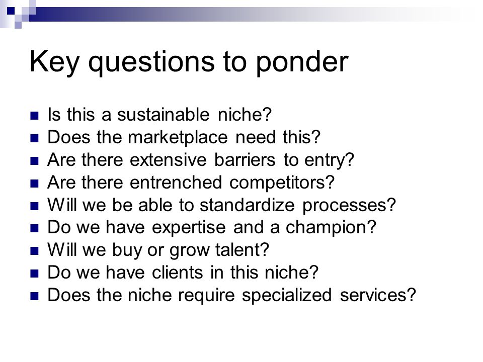 Key questions to ponder Is this a sustainable niche? Does the marketplace need this? Are there extensive barriers to entry? Are there entrenched compe