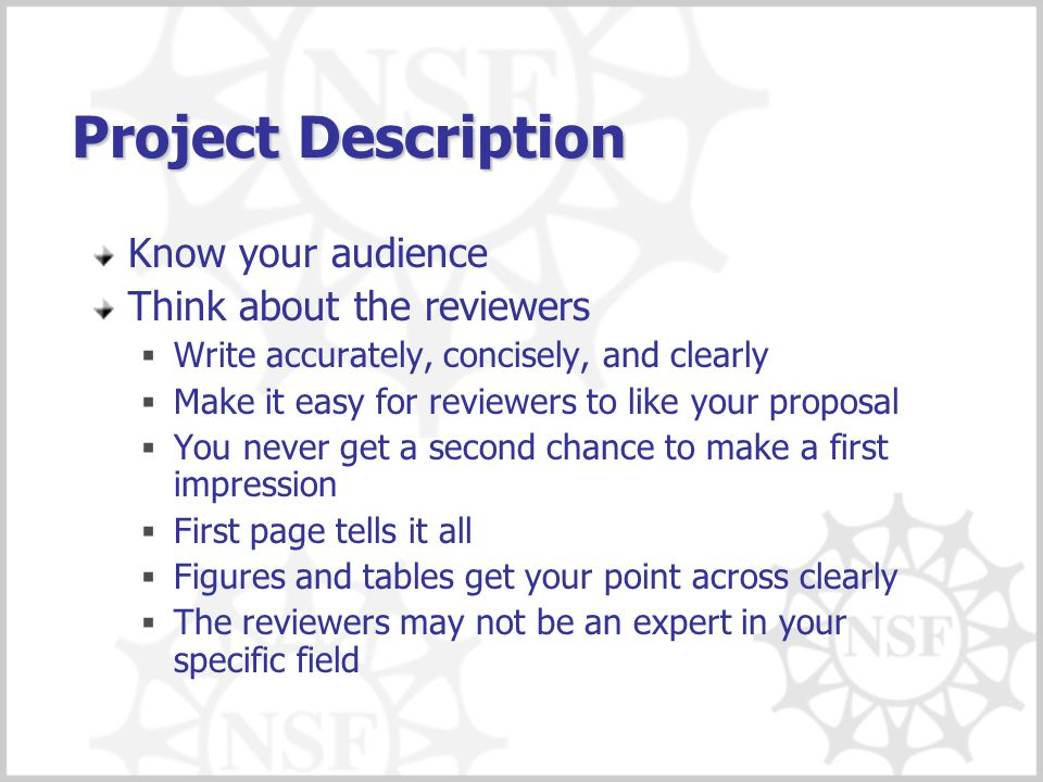 Project Description Know your audience Think about the reviewers  Write accurately, concisely, and clearly  Make it easy for reviewers to like your