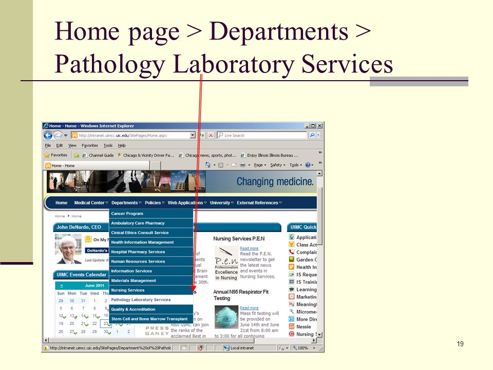 19 Home page > Departments > Pathology Laboratory Services