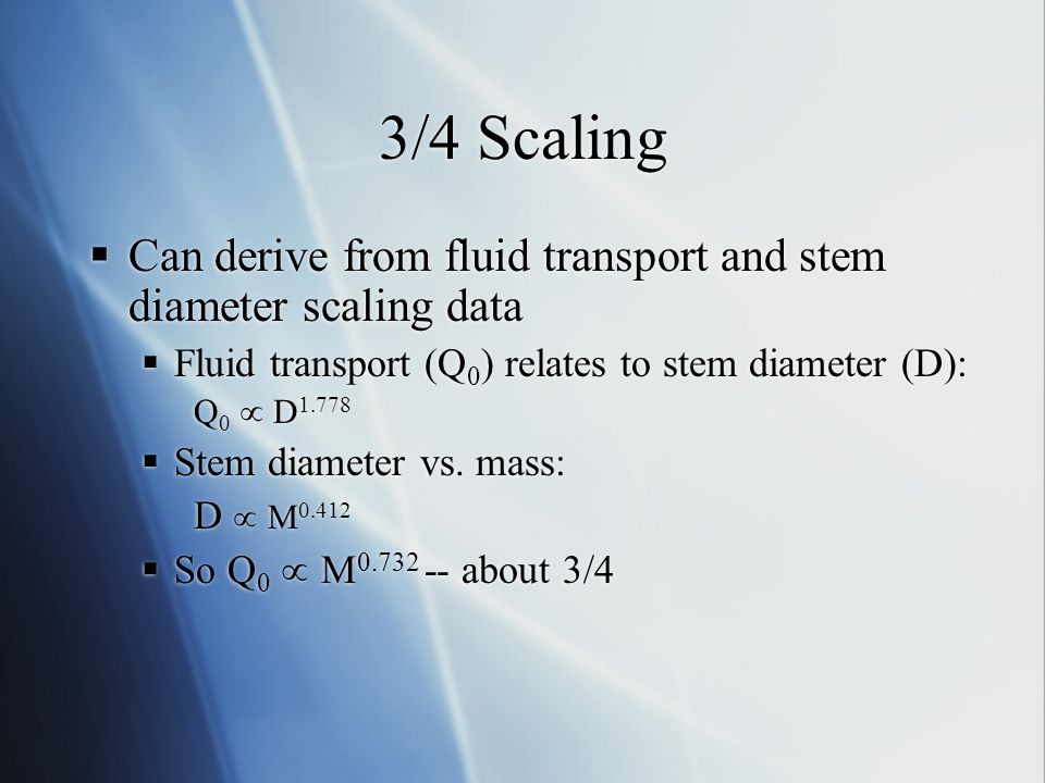 3/4 Scaling  Can derive from fluid transport and stem diameter scaling data  Fluid transport (Q 0 ) relates to stem diameter (D): Q 0  D 1.778  St