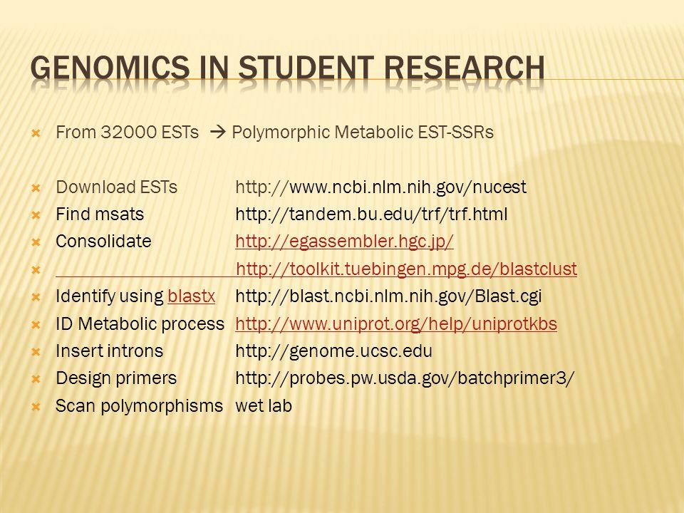  From 32000 ESTs  Polymorphic Metabolic EST-SSRs  Download ESTs http://www.ncbi.nlm.nih.gov/nucest  Find msats http://tandem.bu.edu/trf/trf.html  Consolidate http://egassembler.hgc.jp/http://egassembler.hgc.jp/  http://toolkit.tuebingen.mpg.de/blastclust http://toolkit.tuebingen.mpg.de/blastclust  Identify using blastx http://blast.ncbi.nlm.nih.gov/Blast.cgiblastx  ID Metabolic process http://www.uniprot.org/help/uniprotkbshttp://www.uniprot.org/help/uniprotkbs  Insert introns http://genome.ucsc.edu  Design primers http://probes.pw.usda.gov/batchprimer3/  Scan polymorphisms wet lab
