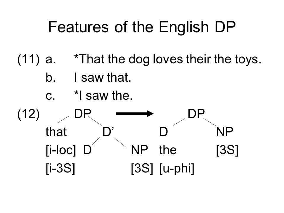 Features of the English DP (11)a.*That the dog loves their the toys.