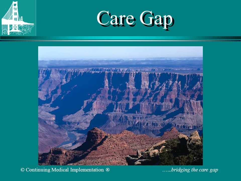 © Continuing Medical Implementation ® …...bridging the care gap Bridging the Care Gap 2007 Joel Niznick MD FRCPC www.cvtoolbox.com