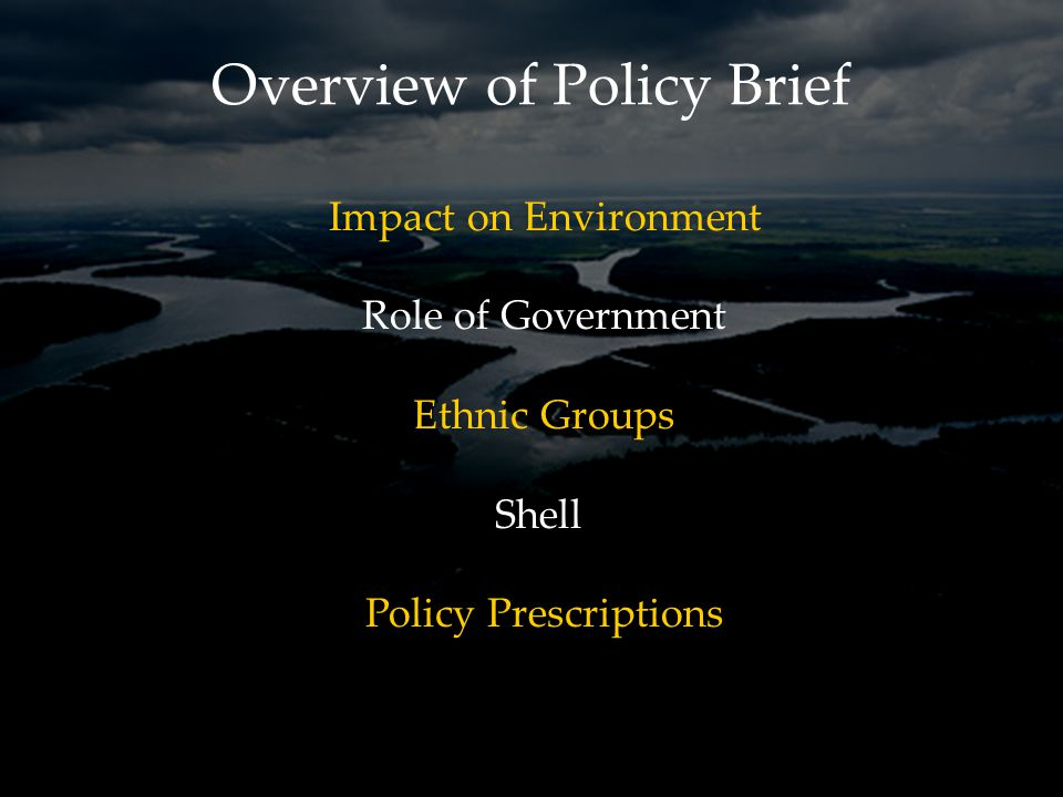 Overview of Policy Brief Impact on Environment Role of Government Ethnic Groups Shell Policy Prescriptions
