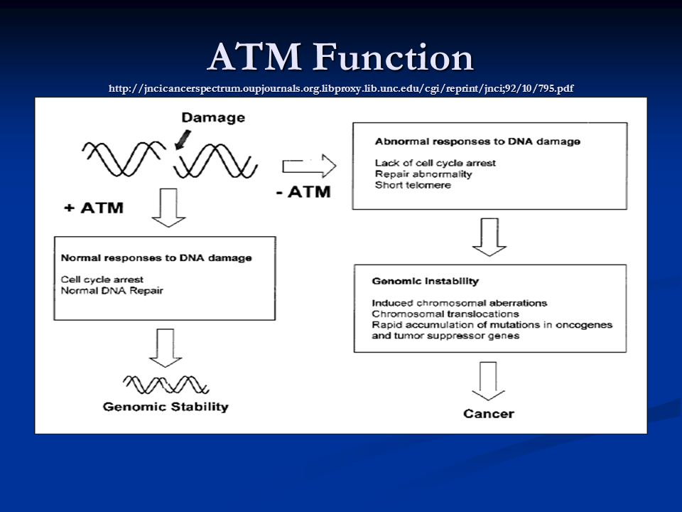 ATM Function http://jncicancerspectrum.oupjournals.org.libproxy.lib.unc.edu/cgi/reprint/jnci;92/10/795.pdf