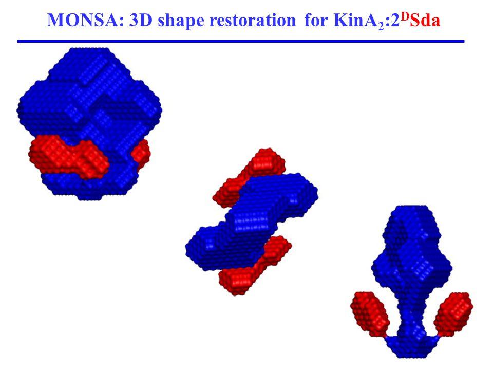 MONSA: 3D shape restoration for KinA 2 :2 D Sda