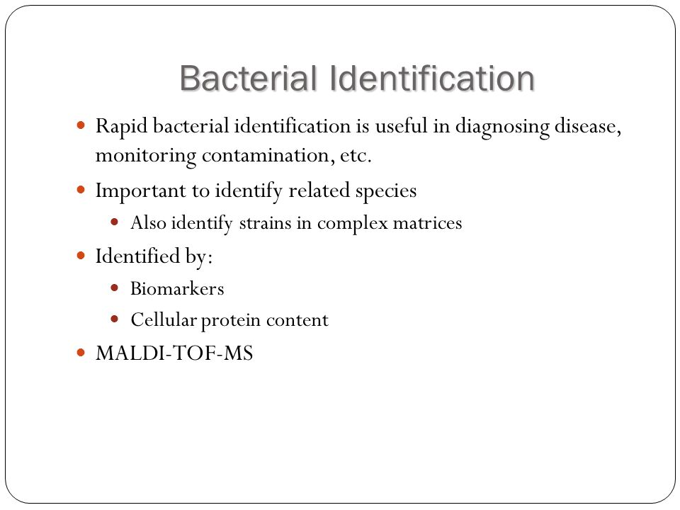 Bacterial Identification Rapid bacterial identification is useful in diagnosing disease, monitoring contamination, etc. Important to identify related