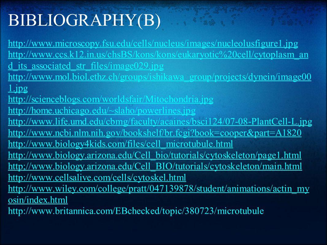 BIBLIOGRAPHY(B) http://www.microscopy.fsu.edu/cells/nucleus/images/nucleolusfigure1.jpg http://www.ccs.k12.in.us/chsBS/kons/kons/eukaryotic%20cell/cyt