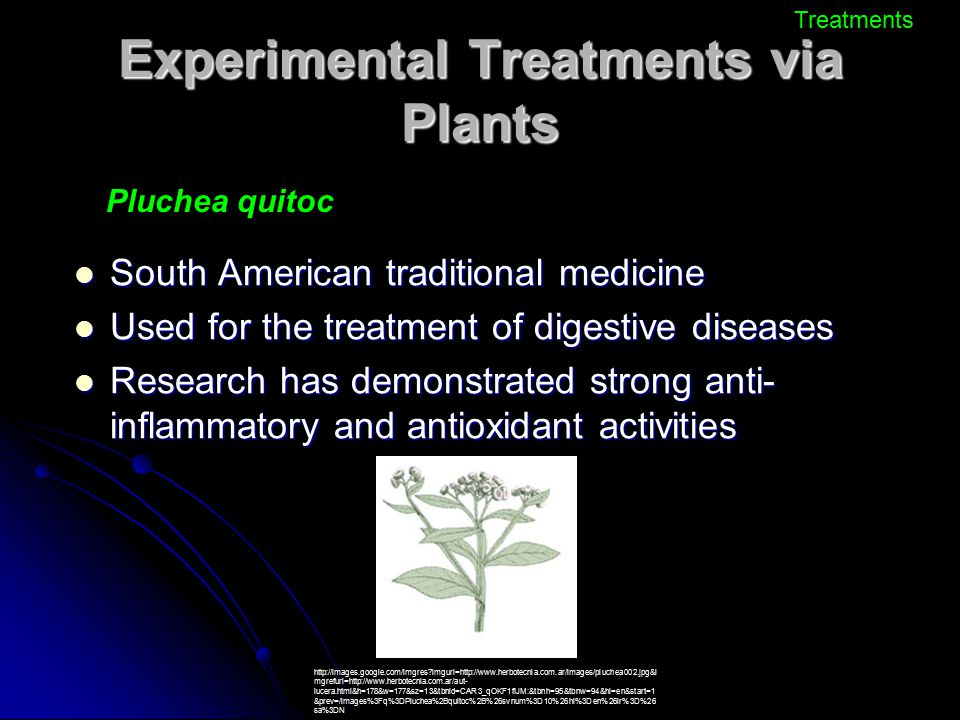 Experimental Treatments via Plants South American traditional medicine South American traditional medicine Used for the treatment of digestive disease