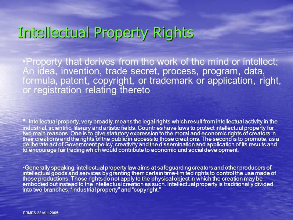 PRMES 22 Mar 2005 Intellectual Property Rights Property that derives from the work of the mind or intellect; An idea, invention, trade secret, process, program, data, formula, patent, copyright, or trademark or application, right, or registration relating thereto Intellectual property, very broadly, means the legal rights which result from intellectual activity in the industrial, scientific, literary and artistic fields.