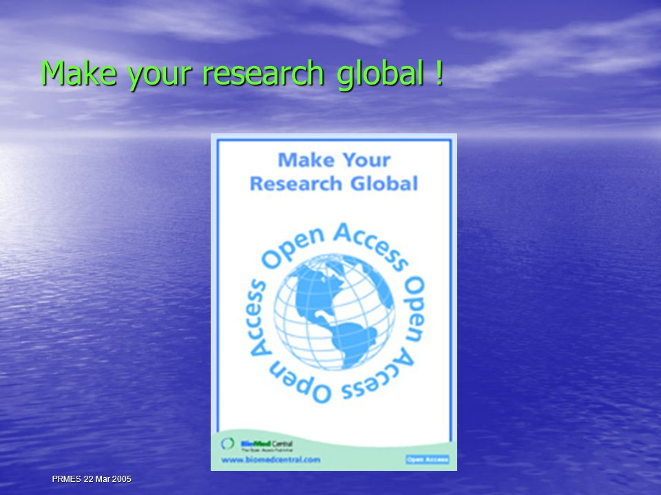 PRMES 22 Mar 2005 Make your research global !