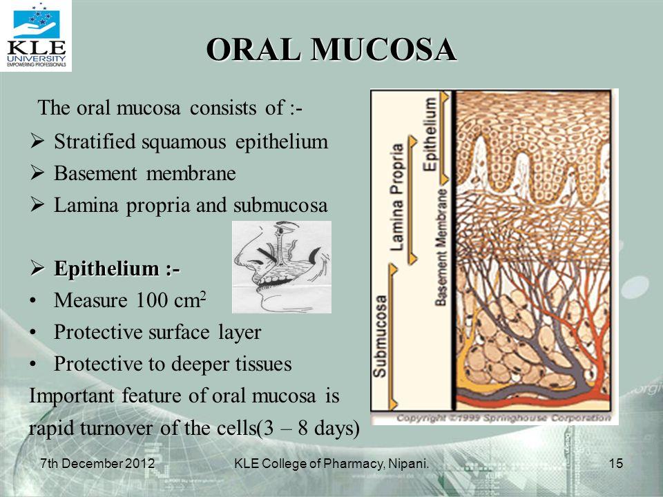 ORAL MUCOSA The oral mucosa consists of :-  Stratified squamous epithelium  Basement membrane  Lamina propria and submucosa  Epithelium :- Measure
