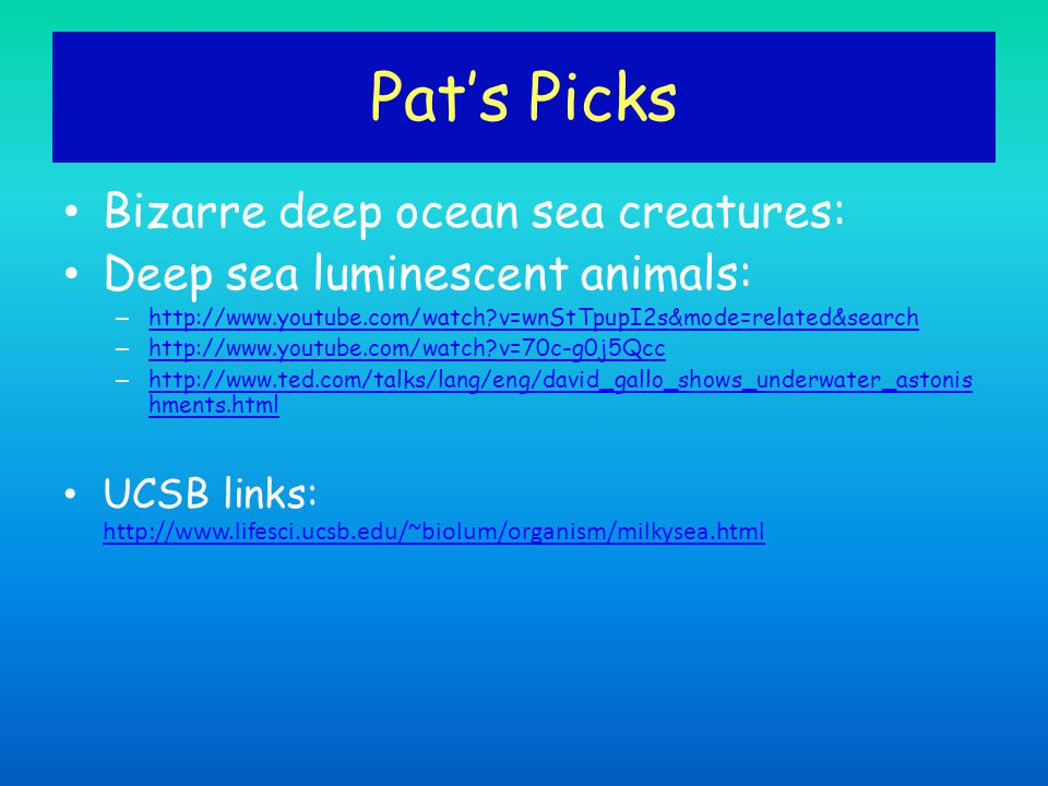 Pat's Picks Bizarre deep ocean sea creatures: Deep sea luminescent animals: – http://www.youtube.com/watch?v=wnStTpupI2s&mode=related&search http://ww