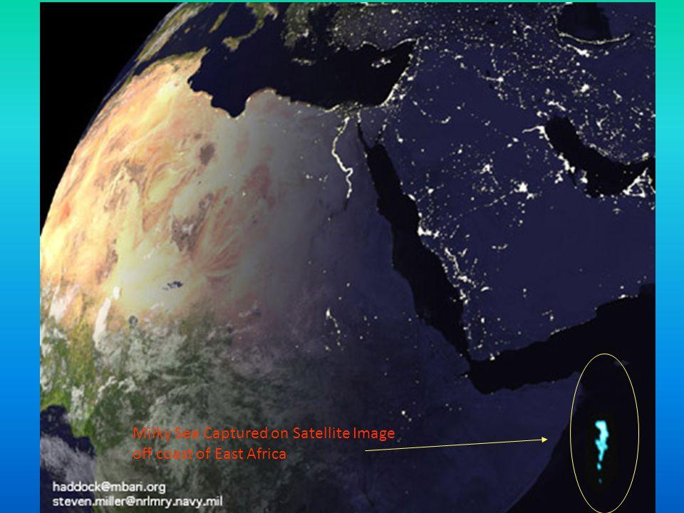 Milky Sea Captured on Satellite Image off coast of East Africa