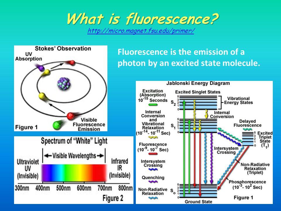 What is fluorescence.What is fluorescence.