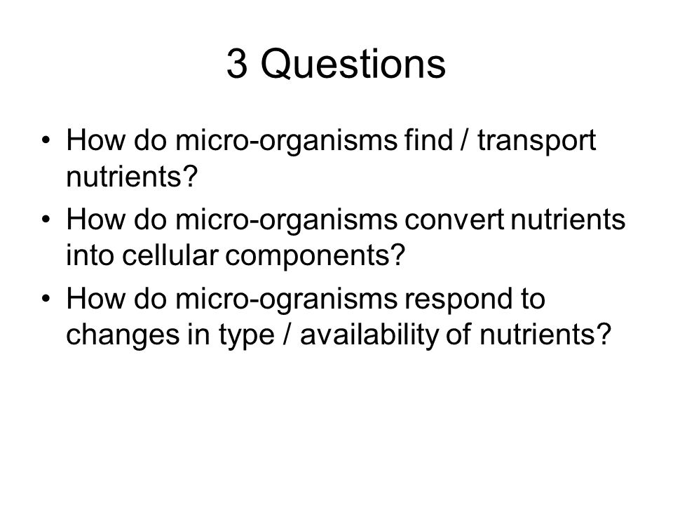 3 Questions How do micro-organisms find / transport nutrients.