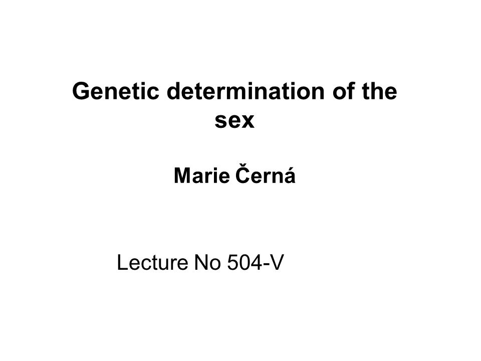 Genetic determination of the sex Marie Černá Lecture No 504-V