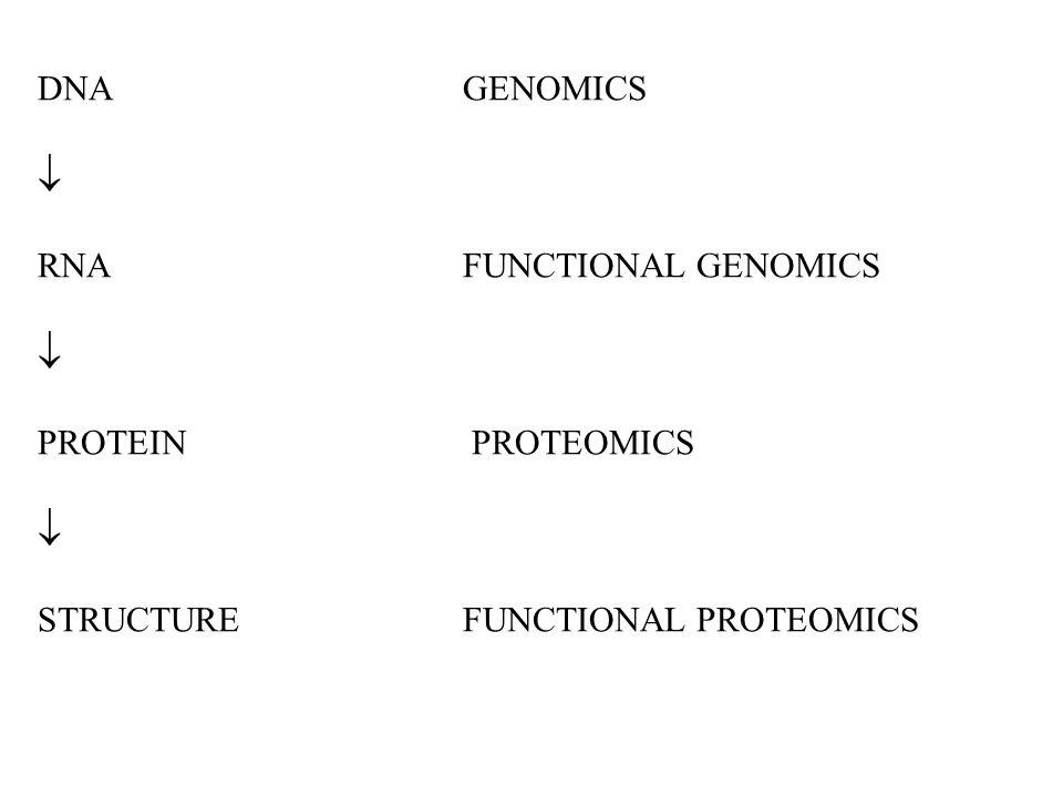 DNAGENOMICS  RNAFUNCTIONAL GENOMICS  PROTEIN PROTEOMICS  STRUCTUREFUNCTIONAL PROTEOMICS