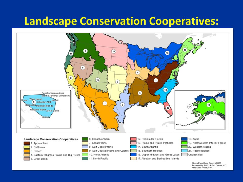 Landscape Conservation Cooperatives: Geographic Areas