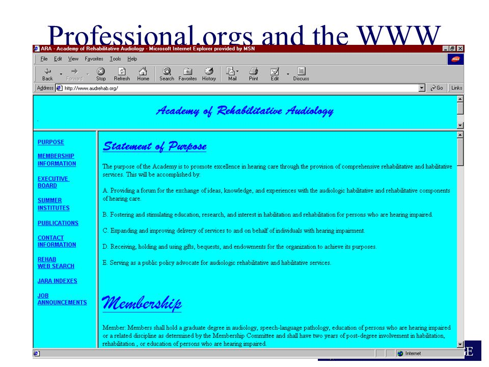ARA Professional.orgs and the WWW