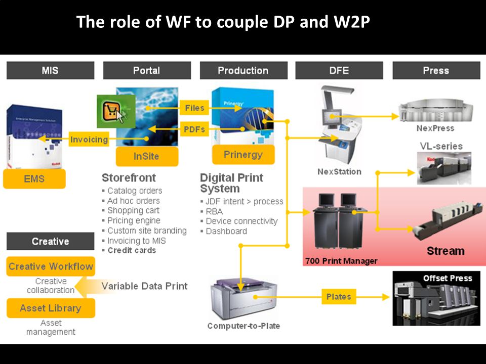 The role of WF to couple DP and W2P