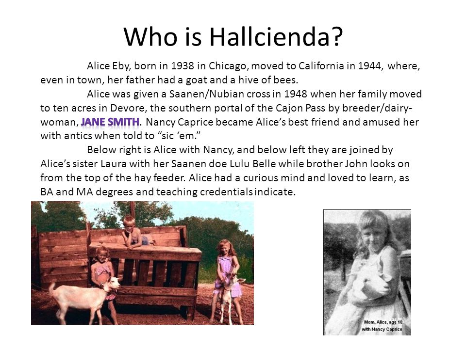 Who is Hallcienda?