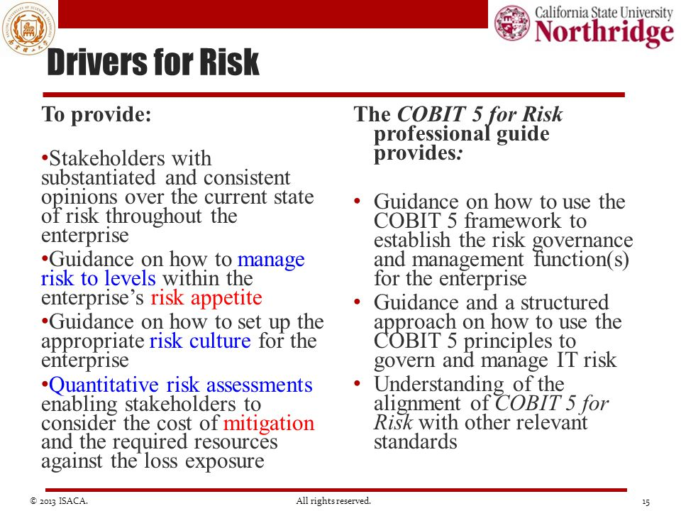 Drivers for Risk To provide: Stakeholders with substantiated and consistent opinions over the current state of risk throughout the enterprise Guidance