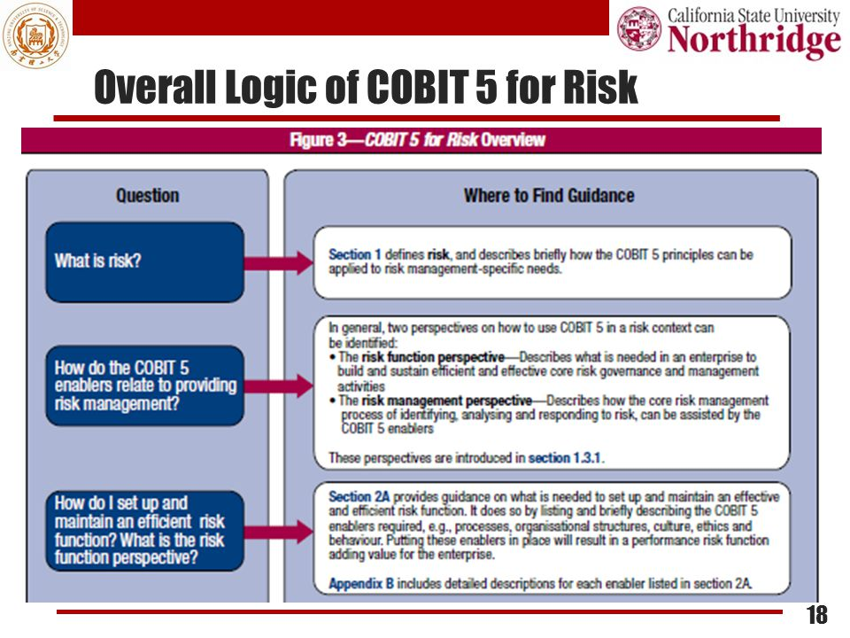 Overall Logic of COBIT 5 for Risk 18