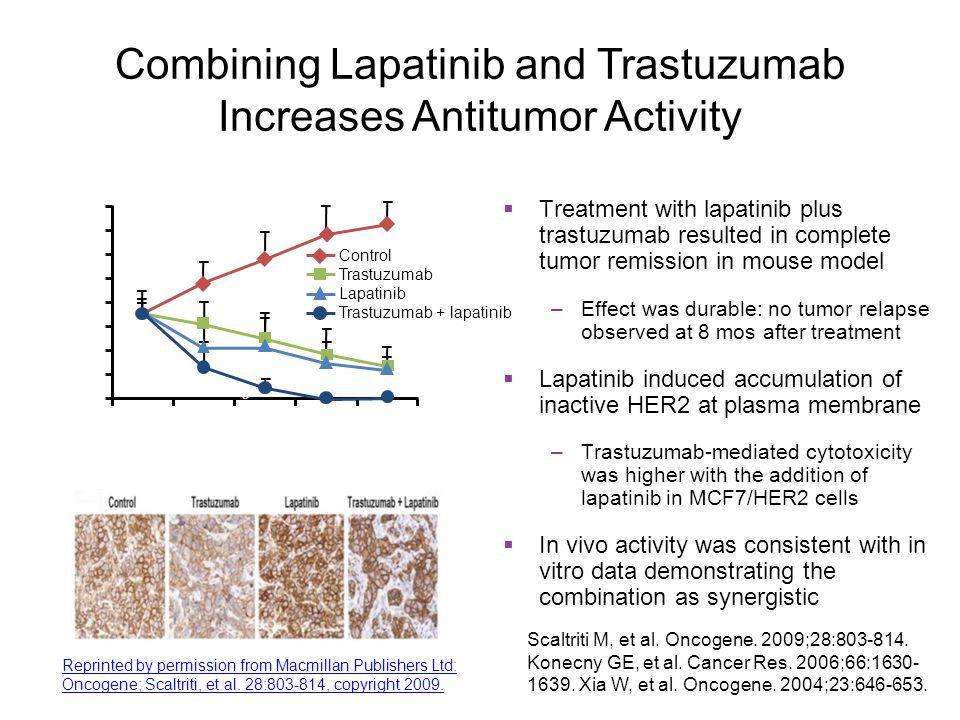 Combining Lapatinib and Trastuzumab Increases Antitumor Activity Scaltriti M, et al. Oncogene. 2009;28:803-814. Konecny GE, et al. Cancer Res. 2006;66