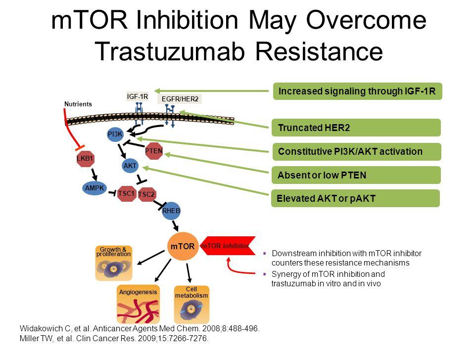 Widakowich C, et al. Anticancer Agents Med Chem. 2008;8:488-496. Miller TW, et al. Clin Cancer Res. 2009;15:7266-7276. mTOR AKT AMPK TSC1 TSC2 PTEN LK