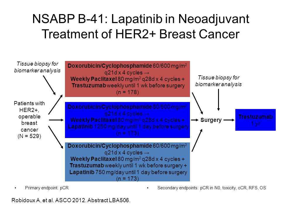 NSABP B-41: Lapatinib in Neoadjuvant Treatment of HER2+ Breast Cancer Primary endpoint: pCRSecondary endpoints: pCR in N0, toxicity, cCR, RFS, OS Robi