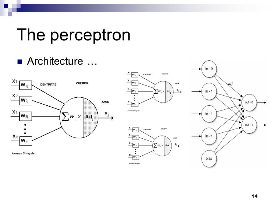 14 The perceptron Architecture …
