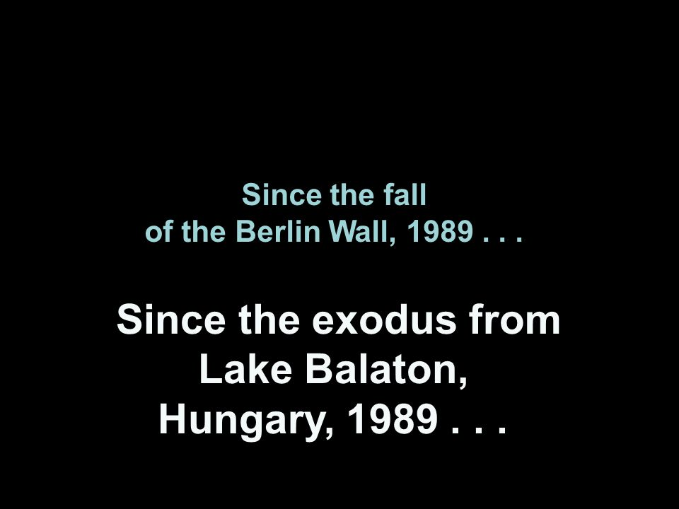 Since the fall of the Berlin Wall, 1989... Since the exodus from Lake Balaton, Hungary, 1989...
