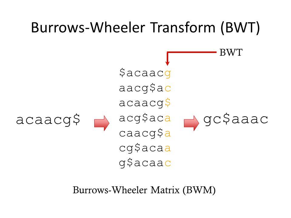 Burrows-Wheeler Transform (BWT) acaacg$ $acaacg aacg$ac acaacg$ acg$aca caacg$a cg$acaa g$acaac gc$aaac Burrows-Wheeler Matrix (BWM) BWT