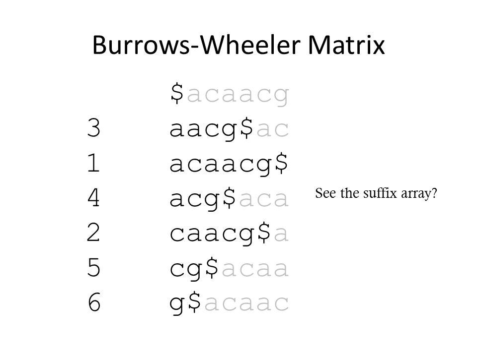 Burrows-Wheeler Matrix $acaacg aacg$ac acaacg$ acg$aca caacg$a cg$acaa g$acaac See the suffix array.