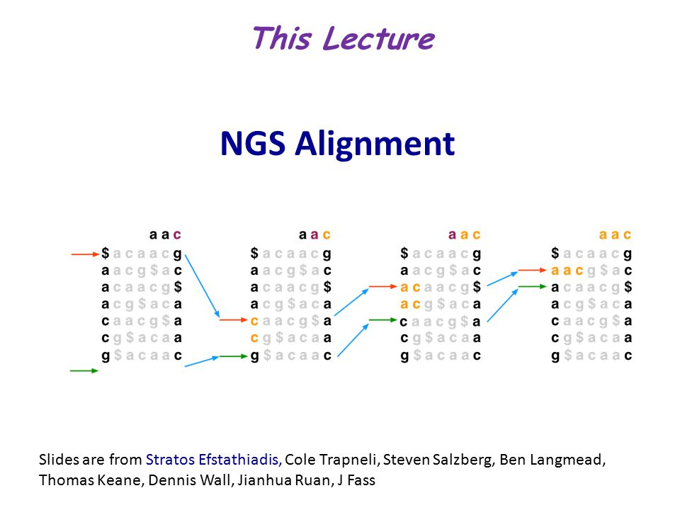 NGS Alignment Slides are from Stratos Efstathiadis, Cole Trapneli, Steven Salzberg, Ben Langmead, Thomas Keane, Dennis Wall, Jianhua Ruan, J Fass This Lecture