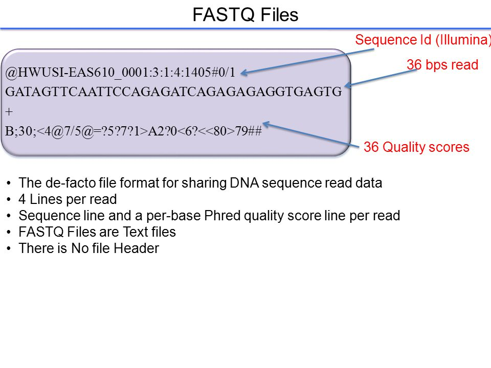 FASTQ Files @HWUSI-EAS610_0001:3:1:4:1405#0/1 GATAGTTCAATTCCAGAGATCAGAGAGAGGTGAGTG + B;30; A2?0 79## 36 bps read The de-facto file format for sharing DNA sequence read data 4 Lines per read Sequence line and a per-base Phred quality score line per read FASTQ Files are Text files There is No file Header 36 Quality scores Sequence Id (Illumina)