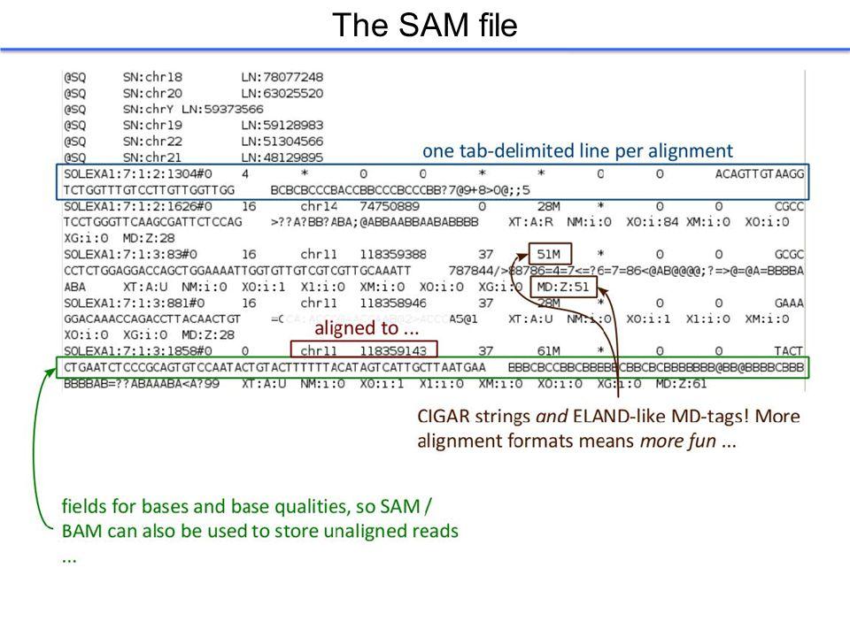 The SAM file